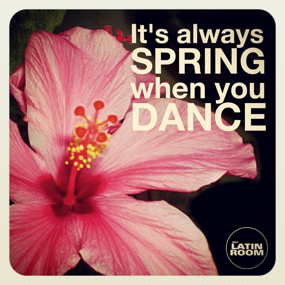 Spring Dance Funchal - LATIN ROOM